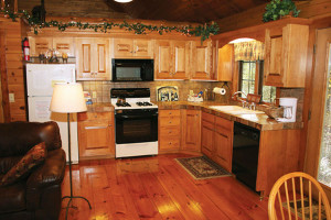 Ferngully-Creek-Cabins-Kitchen